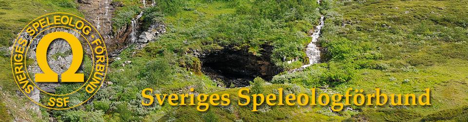 Sveriges Speleologförbund, speleo.se